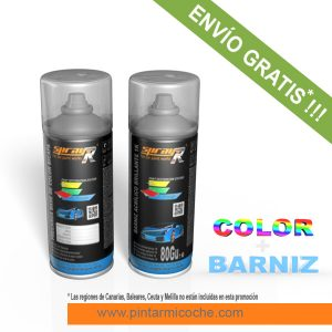 KIT SPRAY BASIC 1K SPRAYR